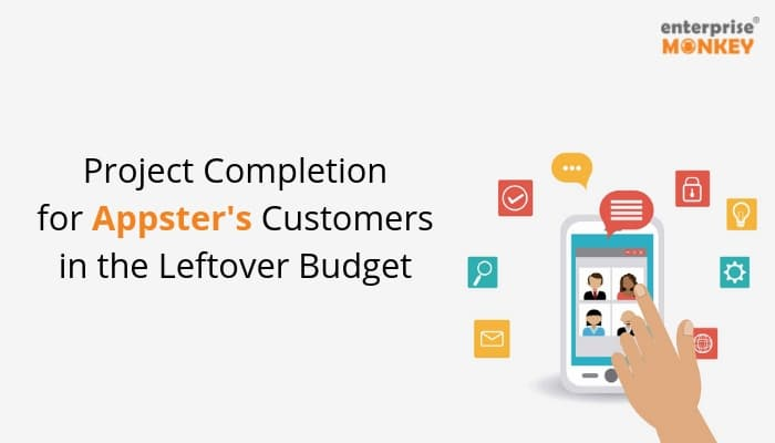 Project Completion for Appster's Customers in the Leftover Budget